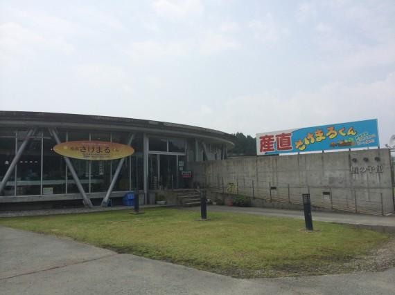 sakenoko
